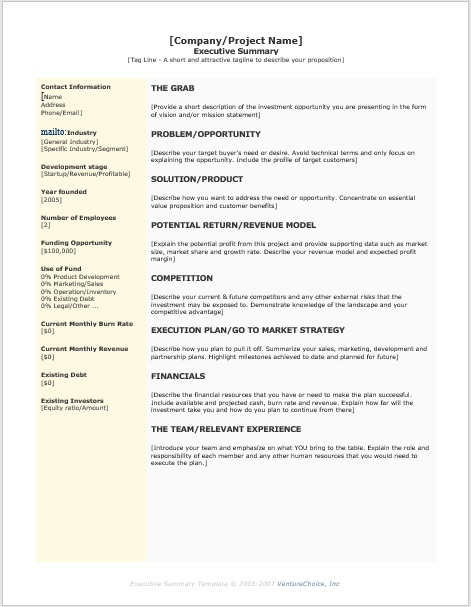 Executive Summary Template 02
