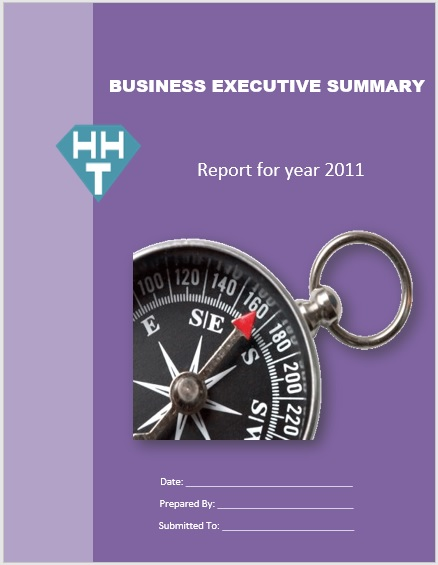 Executive Summary Template 08