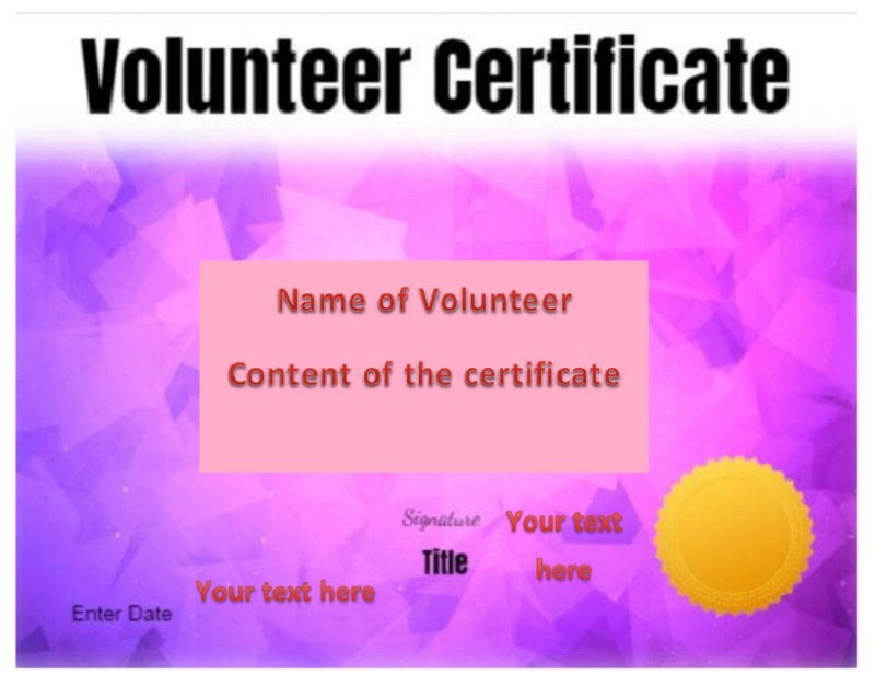 Volunteer Certificate Template 30