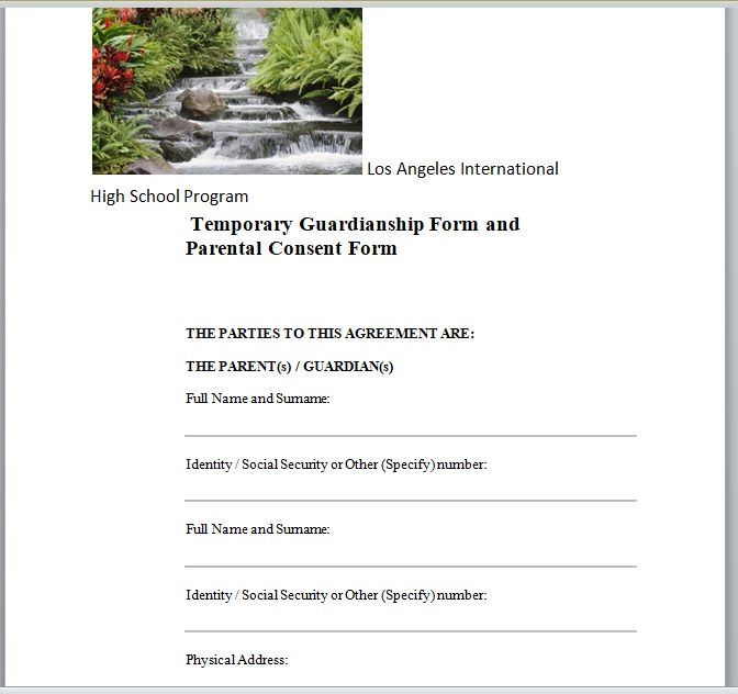 Background Check Form Template 21