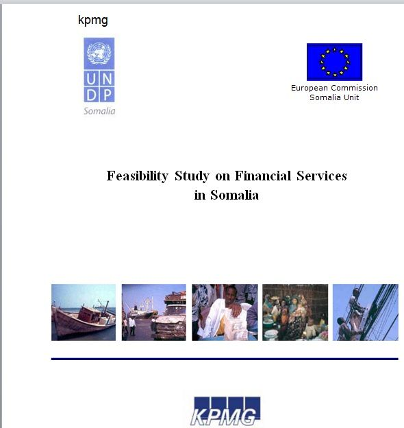Feasibility Study Template 15